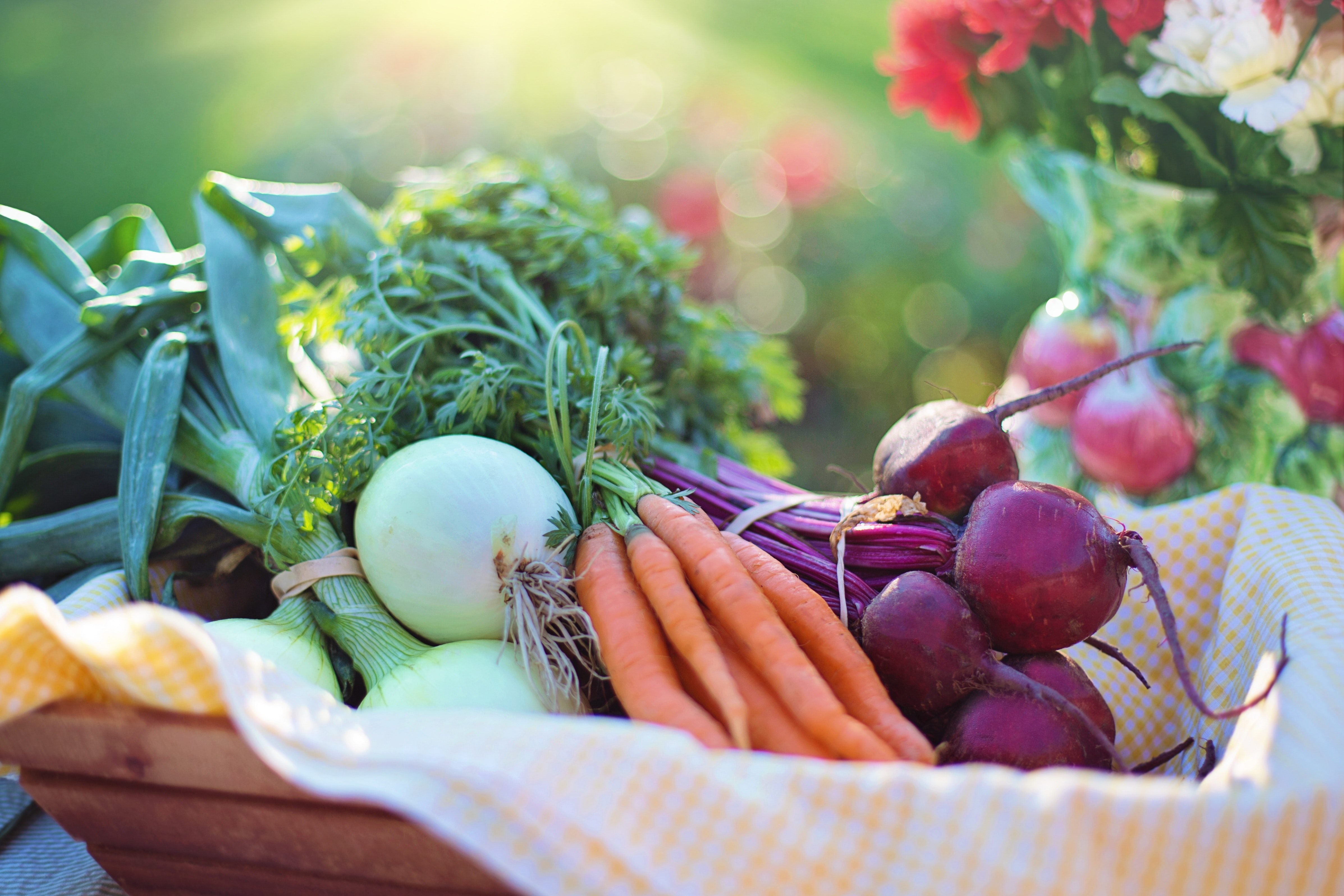 Resolusjon 2: Bærekraftig matproduksjon
