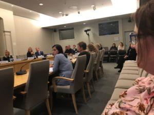 Helene Spro på budsjetthøring i Stortingets Helse- og omsorgskomite